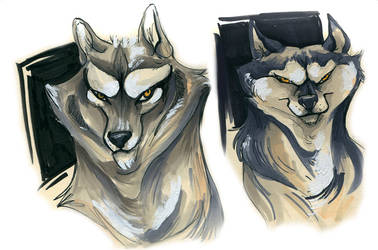 Wolf Sketches by ronaika