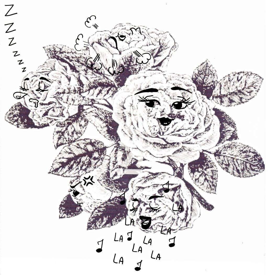 Roses by CassandreLucas
