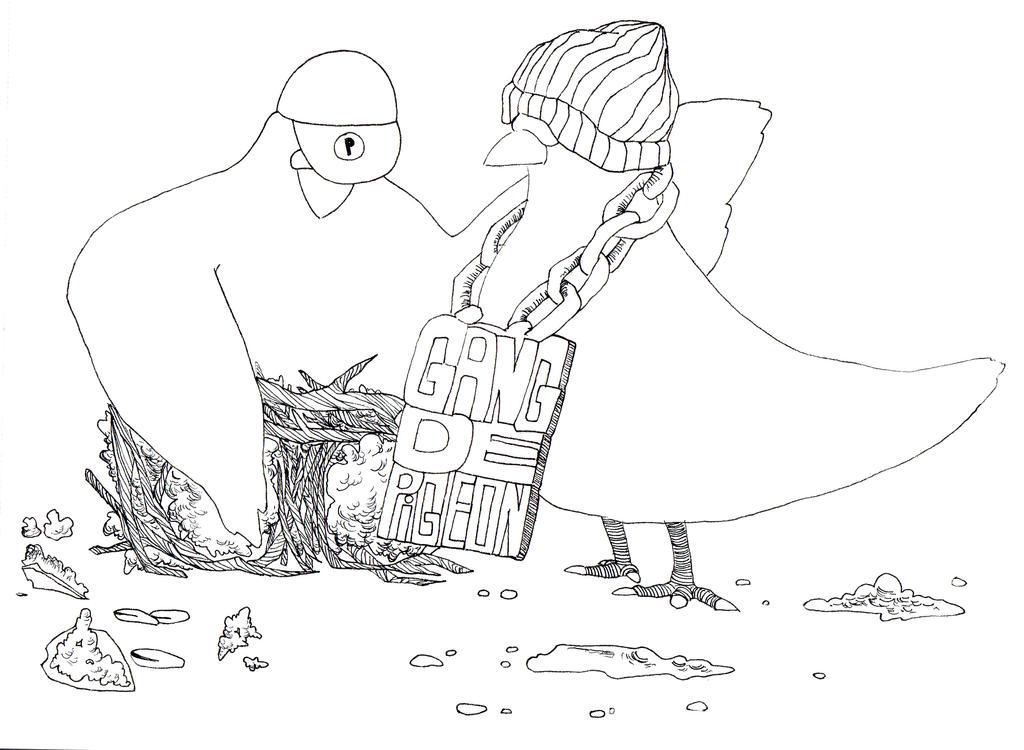 Gang de pigeon by CassandreLucas