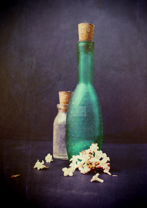 Glass bottles and petals by MagpieMagic
