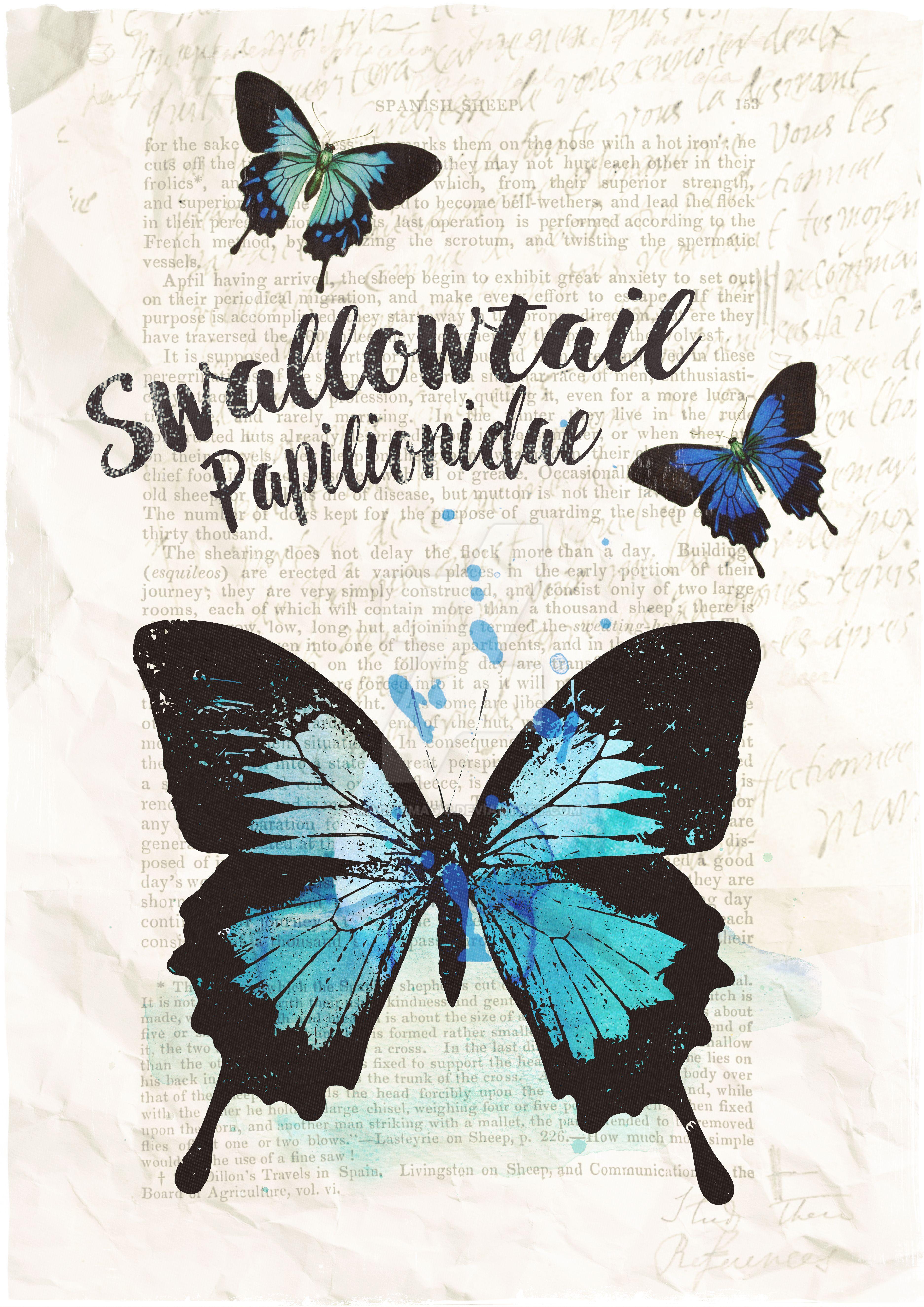 Swallowtail by MagpieMagic