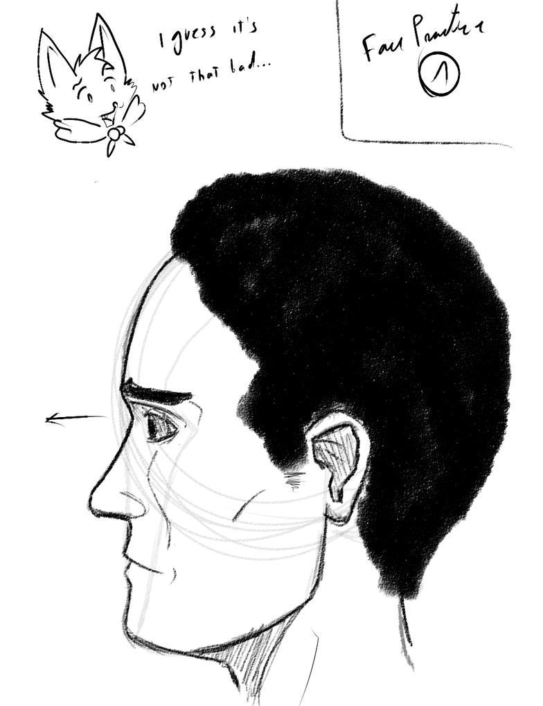 Estudiando Anatomia  Perfil de una cara  Dibujo en trazos