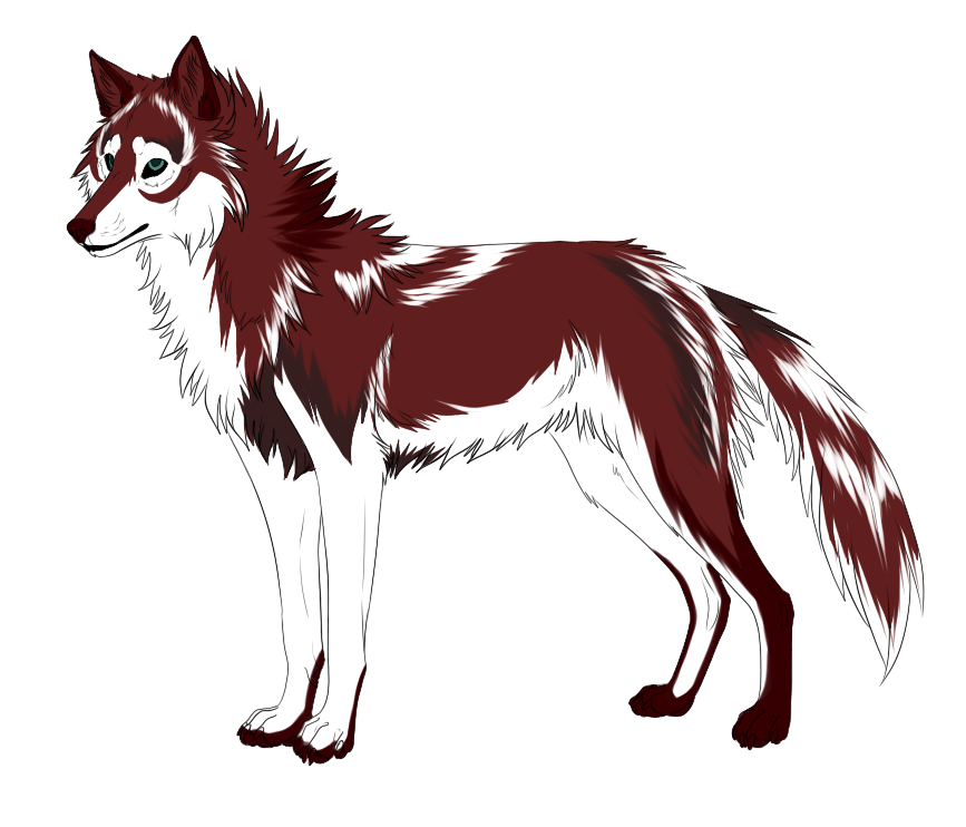 red wolf adopt closed by dniseb on deviantart