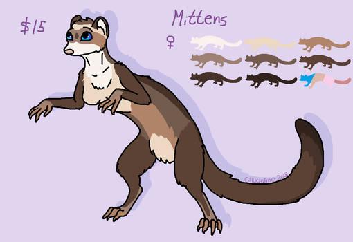 Ferret adopt - 15 usd