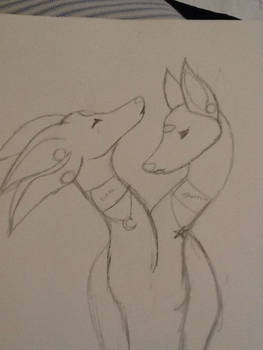 Luna and Starrina
