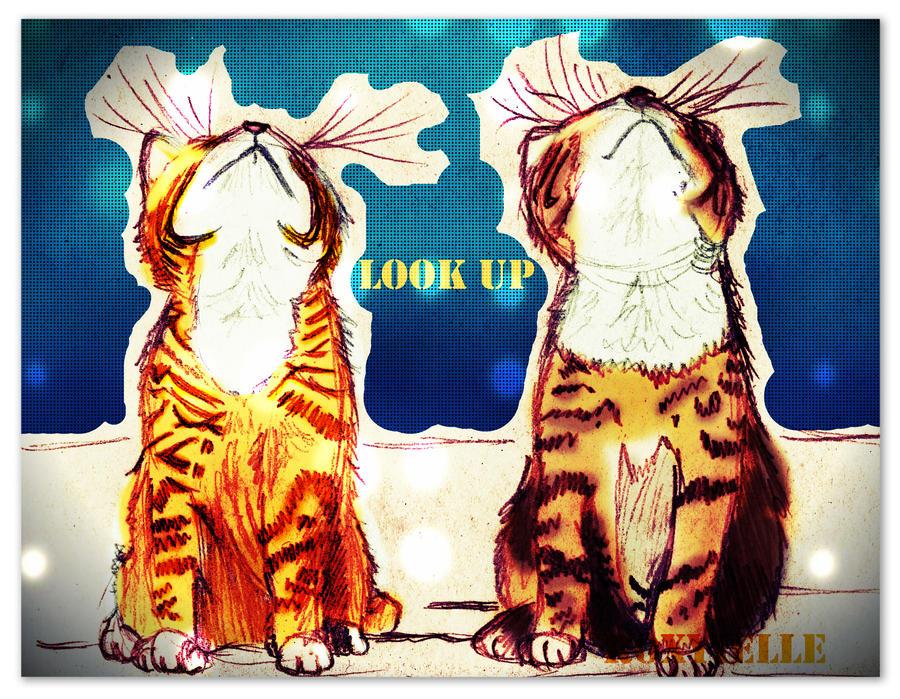 Kittens: Look Up by Roxyielle