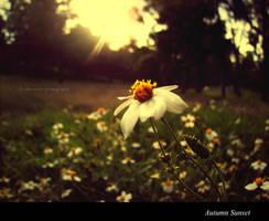 Autumn Sunset by cibervoldo