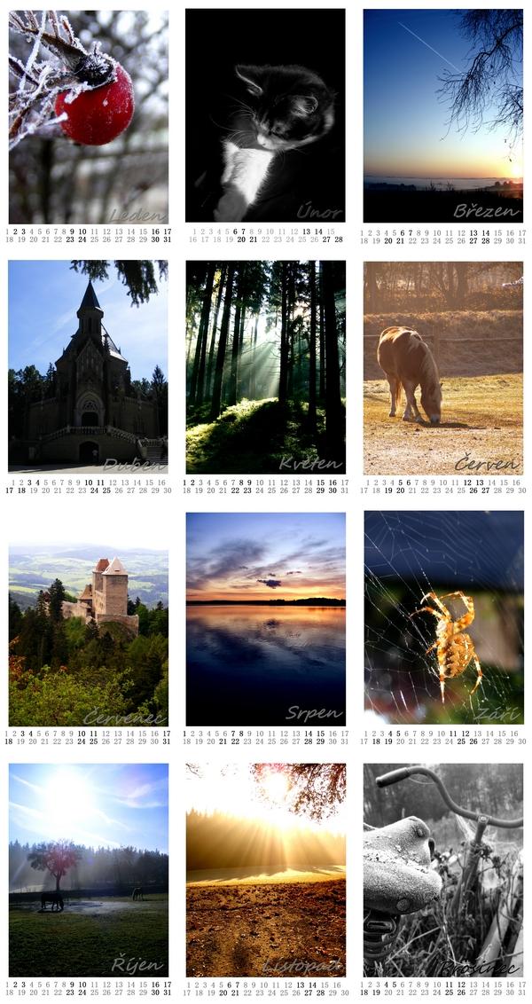 http://fc08.deviantart.net/fs51/f/2009/324/2/6/Calendar_2010_by_missHaslerka.jpg