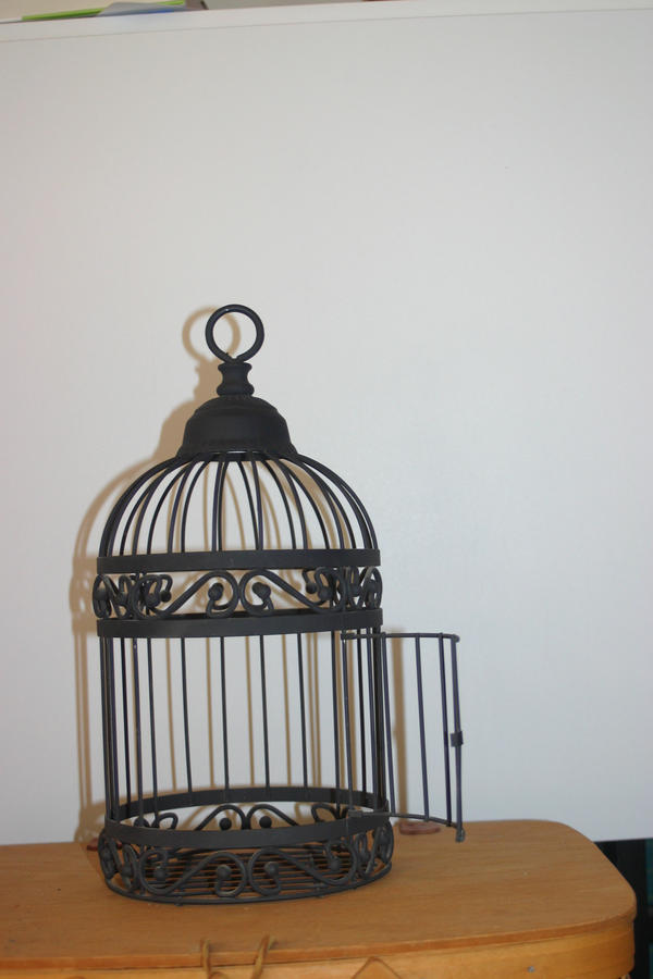 Bird Cage 3 by cstarr-stock