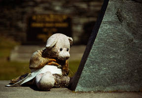 Teddy cries his best friend