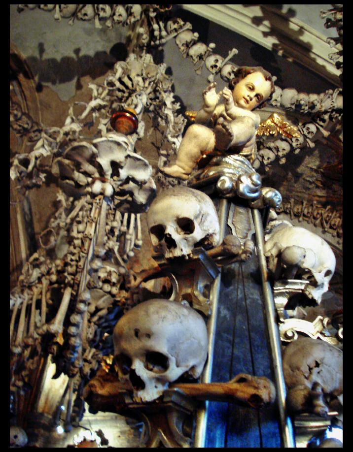 the Bone Show by dogmadic