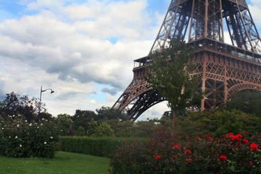 Paris by vivstock