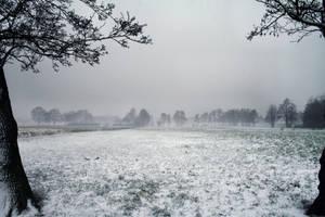Winter 3 by vivstock