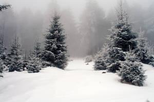Snow 2 by vivstock