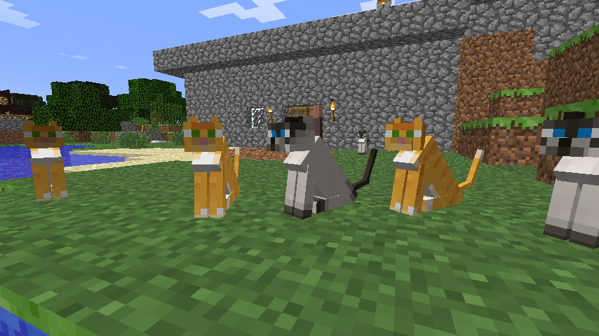 how to make a cat sit in minecraft