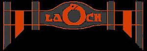 Sheamus Trunks Logo