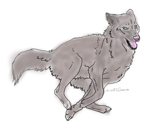 Running Wolf Free Lineart By Sharaiza-d5c42zk by LittleKricketPony5