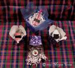 Sushi Ornaments-boxed-