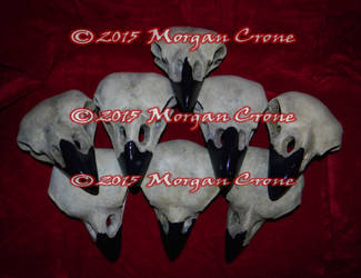 Pile of Birdy Skulls