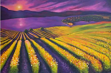 Wine Country by r-straydog
