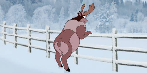 A Wild Reindeer Leaning Towards a Fence