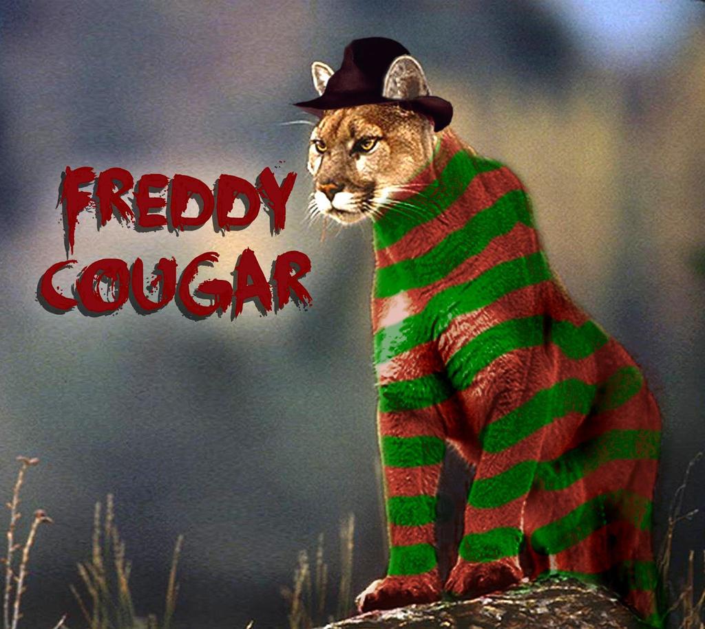 Freddy cougar by brandtk on deviantart - Pictures of freddy cougar ...