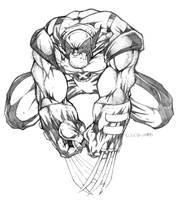 Wolverine by CreatureSink