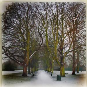 Lames Park2 Ealing London