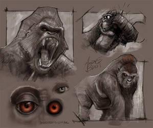 Gorilla concepts