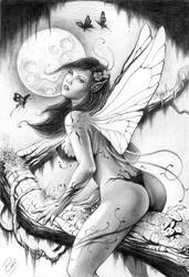 fairy by andrebdois
