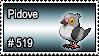 519 - Pidove
