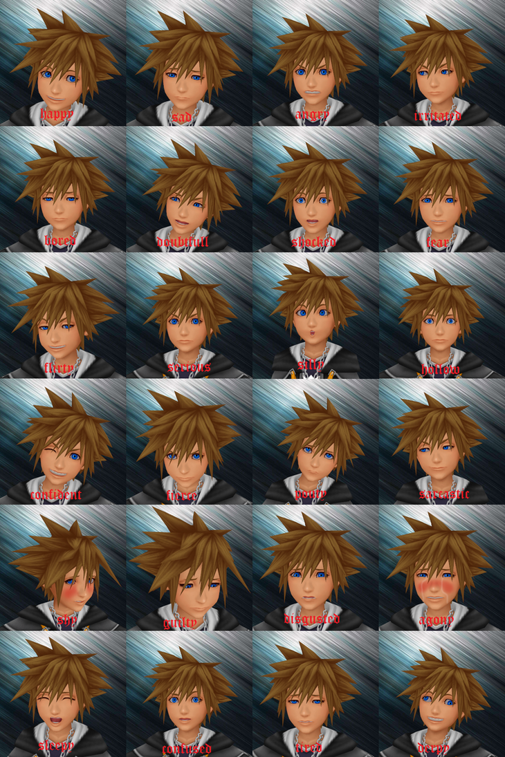 Sora's 24 essential facial  expressions by XSamuraiEdgeX