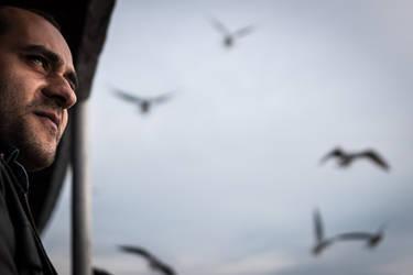 Seagulls by niklin1
