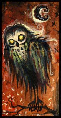 Mr. Owl...