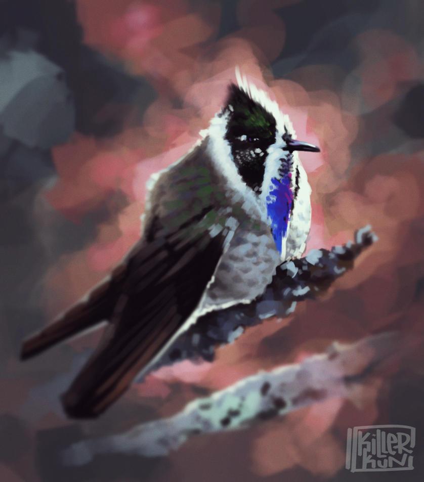 Blue bearded helmetcrest bird. by killerkun