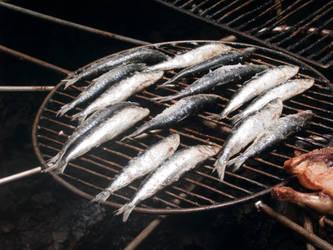 volcano fish