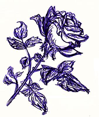 A rose by Lilostitchfan