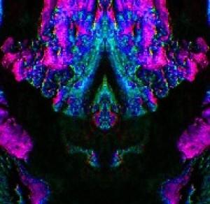 infinitesentient's Profile Picture