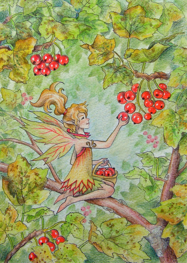 Berry Fairy by Lhox