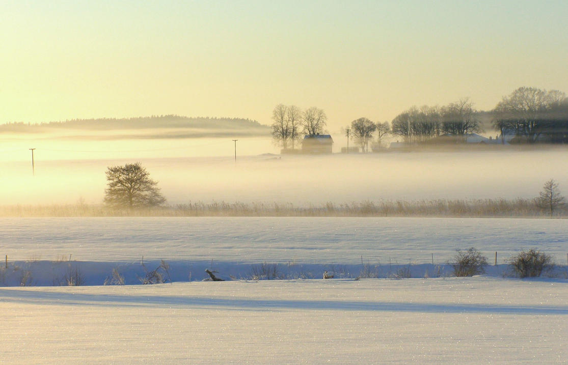 Winterscape by Lhox