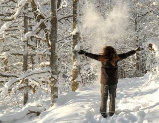 Snowy ID by Lhox