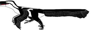Dakotaraptor steini by ChristopherBland