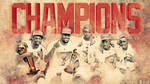 Miami Heat Champions