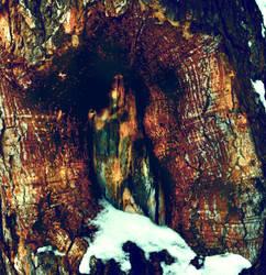 madonna of wood by KittyDarklore