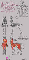 Centaur tutorial-ish thingy
