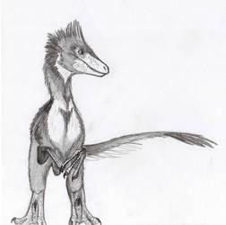 Raptor by JoshuaDunlop