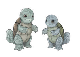 Squirtle Male and Female by JoshuaDunlop