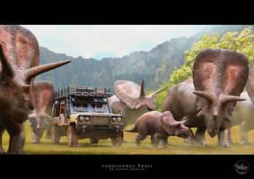 Torosaurus Trail