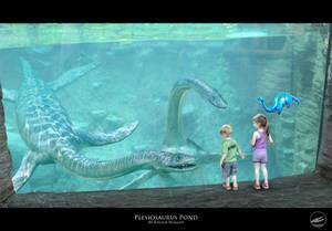 Plesiosaurus Pond