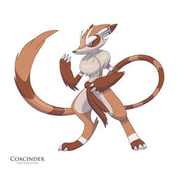 Coacinder